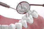 Zahnheilkunde, Zahnarzt